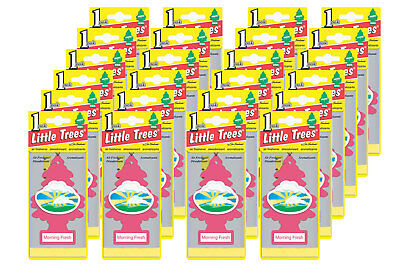 Little Trees Hanging Car and Home Air Freshener,Morning Fresh Scent - Pack of 24