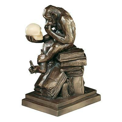 Thinking Ape with Skull Sculpture Darwin Monkey Evolution Bronze Statue