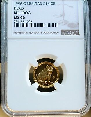 1996 Gibraltar Gold Bulldog Coin 1/10 oz NGC MS66 Pobjoy Mint Only 1,000 Minted!