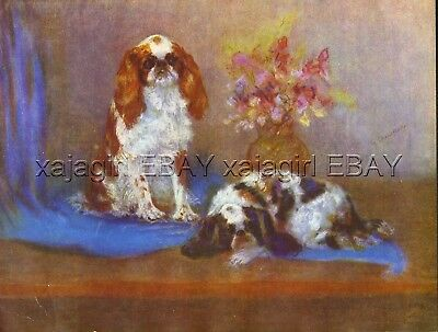DOG Cavalier King Charles Spaniel, Beautiful 1930s Art Print by Shaw-Baker