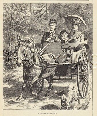 DONKEY CART Ride In Country, Antique 100-yr-old Print