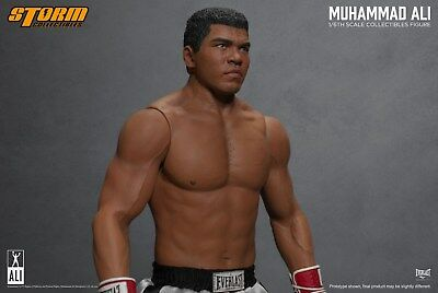 """Muhammad Ali 12"""" Brand New Storm Collectible 1/6 Scale Uk Seller Free Postage"""