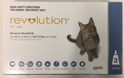 Revolution For Cats