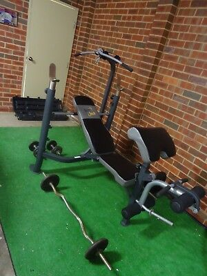 Multi Station Weight Bench Barbells Curl bar Weights and Collars