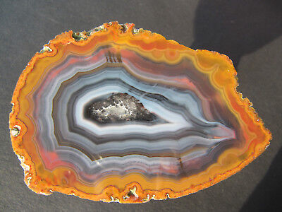 Agate China Fighting Blood Achat