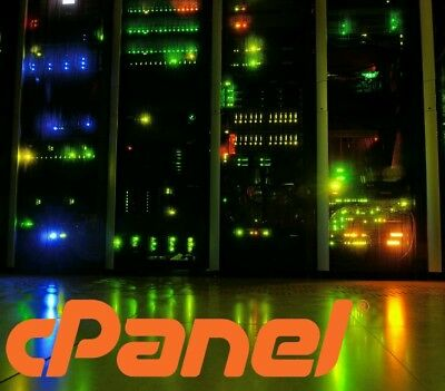 Wordpress Professional cloud SSD website hosting cPanel Web Hosting 4 months
