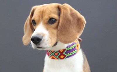 Unique Fine and Exclusive Hand Made Dog Collars by Tzotzil Artisans from Chiapas