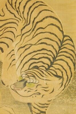 "Hanging Scroll 70.5"" Japanese Painting Tiger Picture Japan Antique Old 三径 b658"