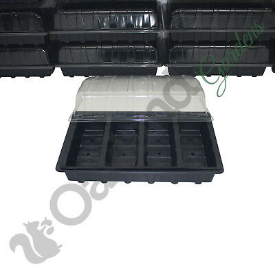2 X Full Size Propagator Set, Lids Seed Trays + 4 Cell Inserts With or No Holes