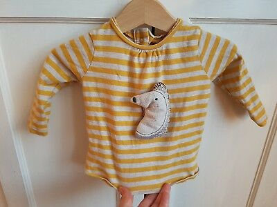 Next 3-6 months unisex striped biscuit and mustard top with hedgehog on front