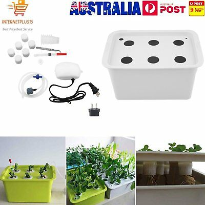 6 Holes Plant Site Hydroponic System Grow Kit Bubble Indoor Cabinet Box GardenMC