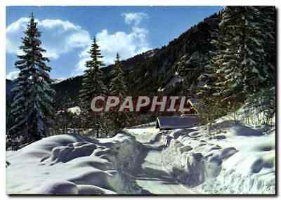 Modern Postcard Image of our Mountains in winter Way of snow through the fir tr