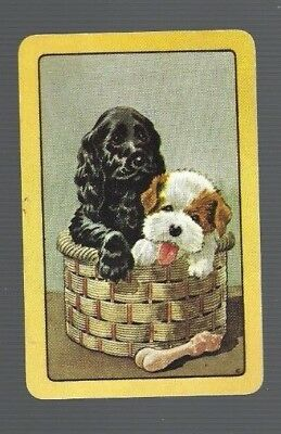 Swap Cards    1   COLES  CARD     UN-  NAMED  TWO  SPANIEL  DOGS  622
