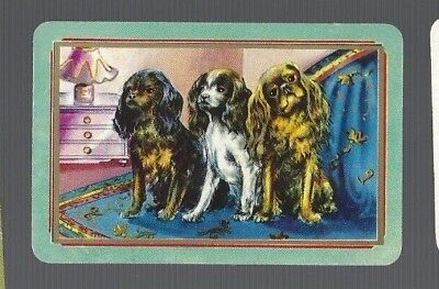 Swap Cards    1   COLES   CARD     UN-  NAMED  THREE   SPANIEL  DOGS  440