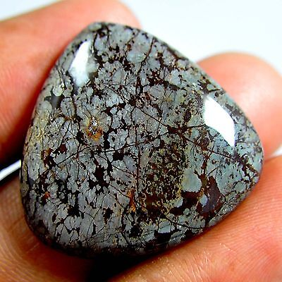 32.25 Cts 100%Natural African Fossil Coral Pear Cabochon Ebay Loose Gemstone