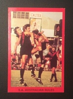 Sanfl 1973 South Adelaide Panthers David Darcy Footy Card Sunblest Tip Top