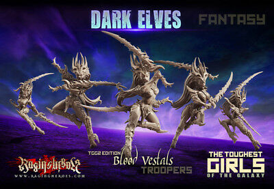 Raging Heroes - Blood Vestals - Troopers (Fantasy) - NEW - Dark Elves