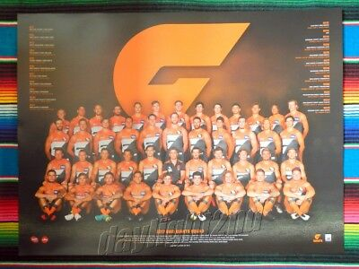 ✺New✺ 2017 GWS GIANTS Limited Edition AFL Poster - 80cm x 60cm