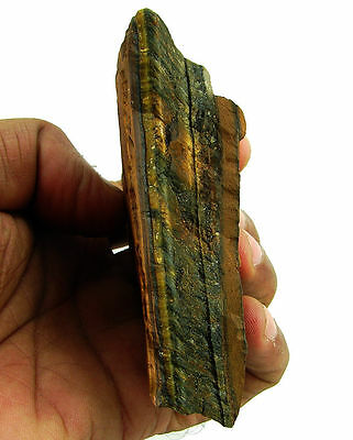 1161.00 Ct Natural Tiger Eye Loose Gemstone Rough Specimen Stone - 7720