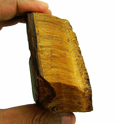 1362.00 Ct Natural Tiger Eye Loose Gemstone Rough Specimen Stone - 7719