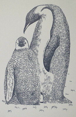 PENGUINS Drawn from Words Art Print #30 by Stephen Kline MOM BABY Happy Feet