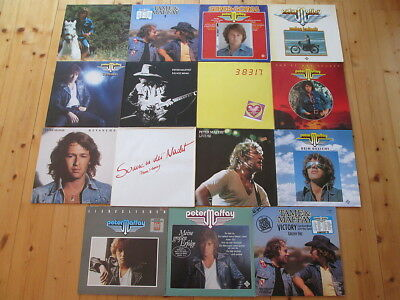 Peter Maffay 14 LPs + 1 Maxi - SAMMLUNG - Tame, Steppenwolf, Live, Revanche