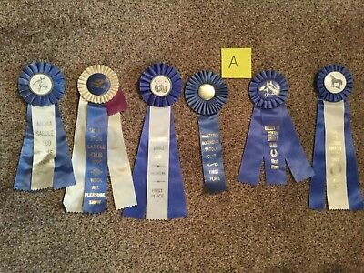 Lot of 6 Vintage Horse Show Ribbons ALL BLUE- Birthday Party pack - LOT A