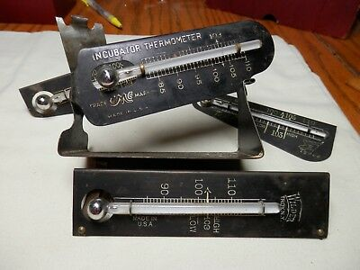 vintage incubator thermometer