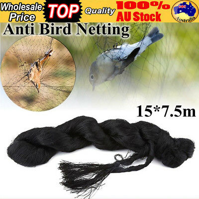 Commercial Fruit Tree Plant Knitted Anti Bird Pest Netting Heavy Weight 15*7.5M