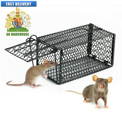 Metal Rat Trap Cage Metal Mouse Cage Human Animal Pest Control Large Strong FF