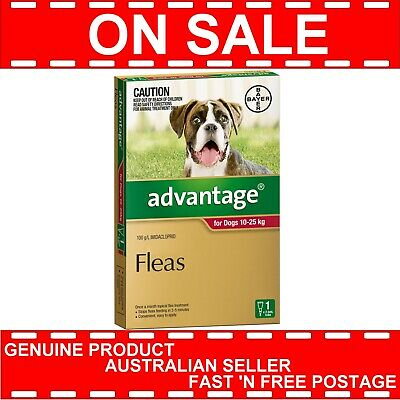 Advantage for Dogs 10-25kg 1 Pack (Single Monthly Dose)