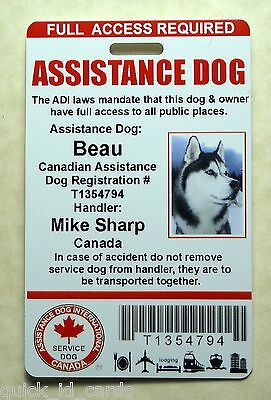 Canada Adi Laws Service Dog / Pet Id Card Badge Id For Service Animal Tag 23