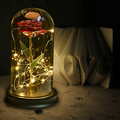 WR 24K Gold Dipped Rose Beauty And The Beast Enchanted Flower Glass Dome Light
