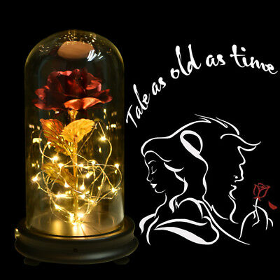 WR Beauty and The Beast Rose LED Light Glass Dome Gold Foil Flower Lasts Forever