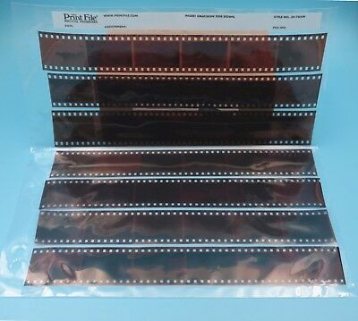 50Pc PrintFILE 35mm 35 Negative Pages Sleeves Film Archival Preservers 35-7BXW