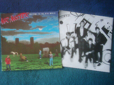 Vinyl LP   MR. MISTER   WELCOME TO THE REAL WORLD  mit Original Inlet