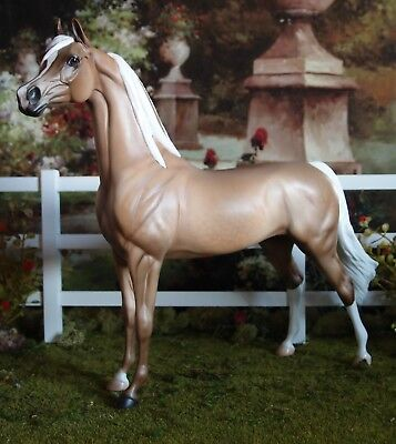 Peter Stone beautiful Golden Palomino Arabian Mare