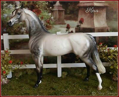 Peter Stone beautiful Arabian stallion Keus Jackie Turner custom