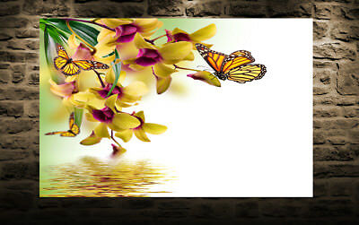 Yellow Orchid Flowers Butterflies Canvas Wall Art Picture Print - ALL SIZES