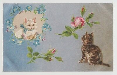 POSTCARD - artist drawn, romantic cats, blue & pink flowers, Helena Maguire?