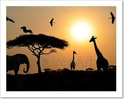 Animal Silhouettes Over Sunset On Art Print Home Decor Wall Art Poster - C