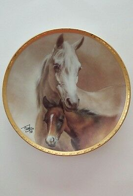 Fred Stone 1993 Arabian Mare & Foal Collector Plate