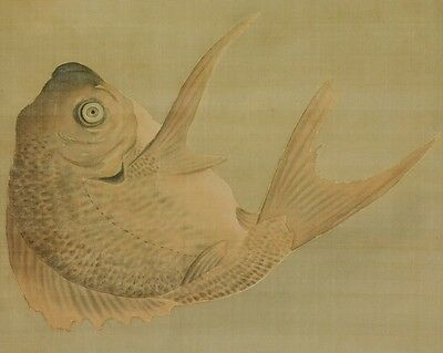 Japanese Painting red snapper Hanging Scroll Picture Antique Japan ink art a980