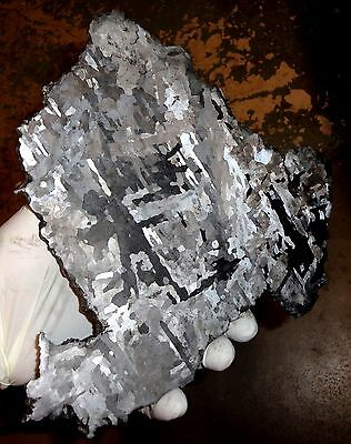 Beautiful Largest 1270 Gm Campo Del Cielo Etched Meteorite Slab!!!
