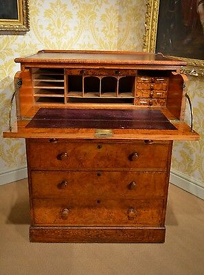 Early 19th Century Pollard Oak Chest with fabulous colour and superb proportions