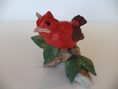 Numbered Vintage Red Baby Cardinal Bird On Branch With Leaves Figurine
