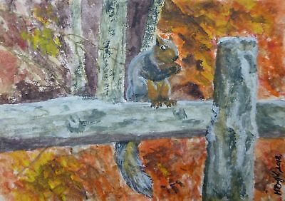 Squirrel aceo original miniature forest woods watercolor animals painting autumn