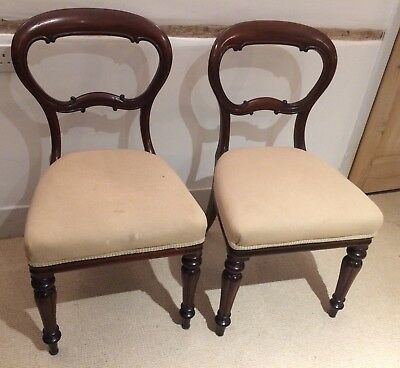 Pair Of Antique Mahogany Balloon Back Dining Chairs   Need A Little Work