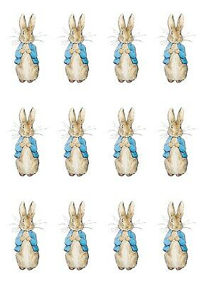 transfers*iron on* baby grow* vest* t shirts * front veiw peter rabbits x 12