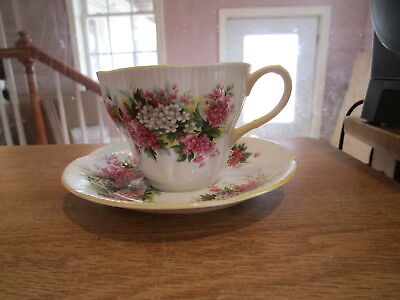 Royal Albert Hawthorn Blossom Time Series Tea Cup & Saucer